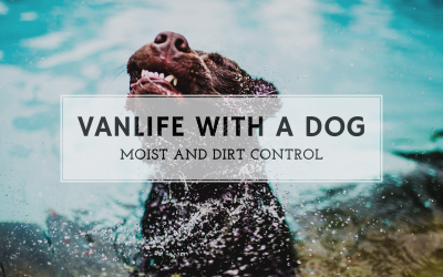 Vanlife with a dog; moist and dirt control