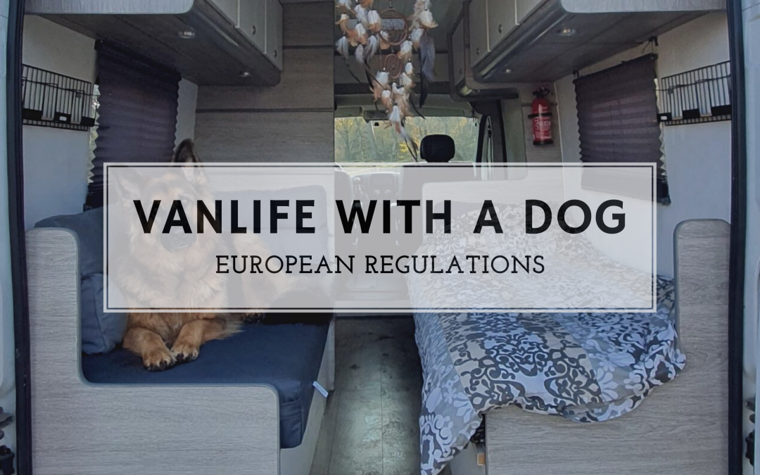 Vanlife with a dog; European regulations